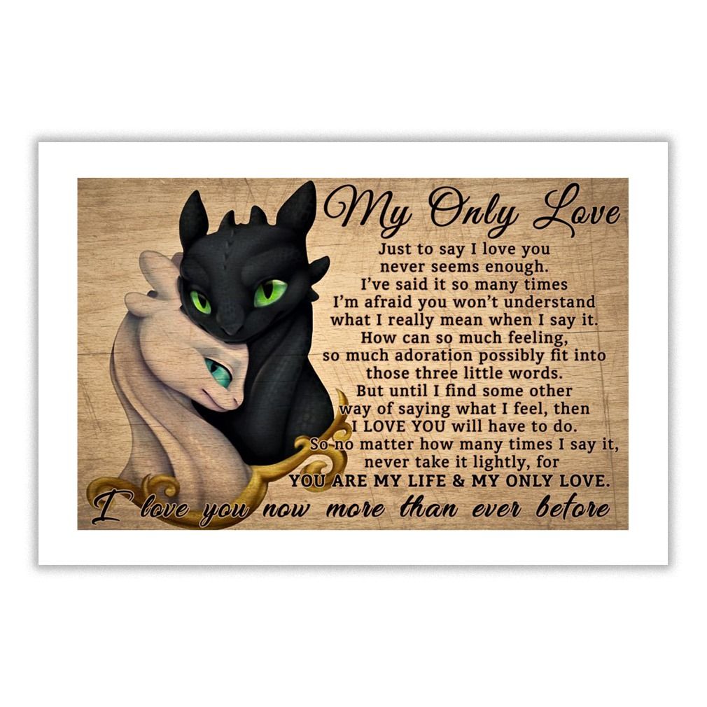 Toothless and Light Fury my only love just to say I love you poster