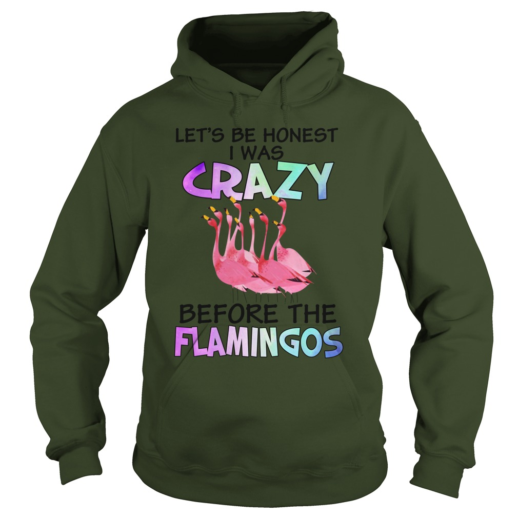 Let's be honest i was crazy before the flamingos hoodie