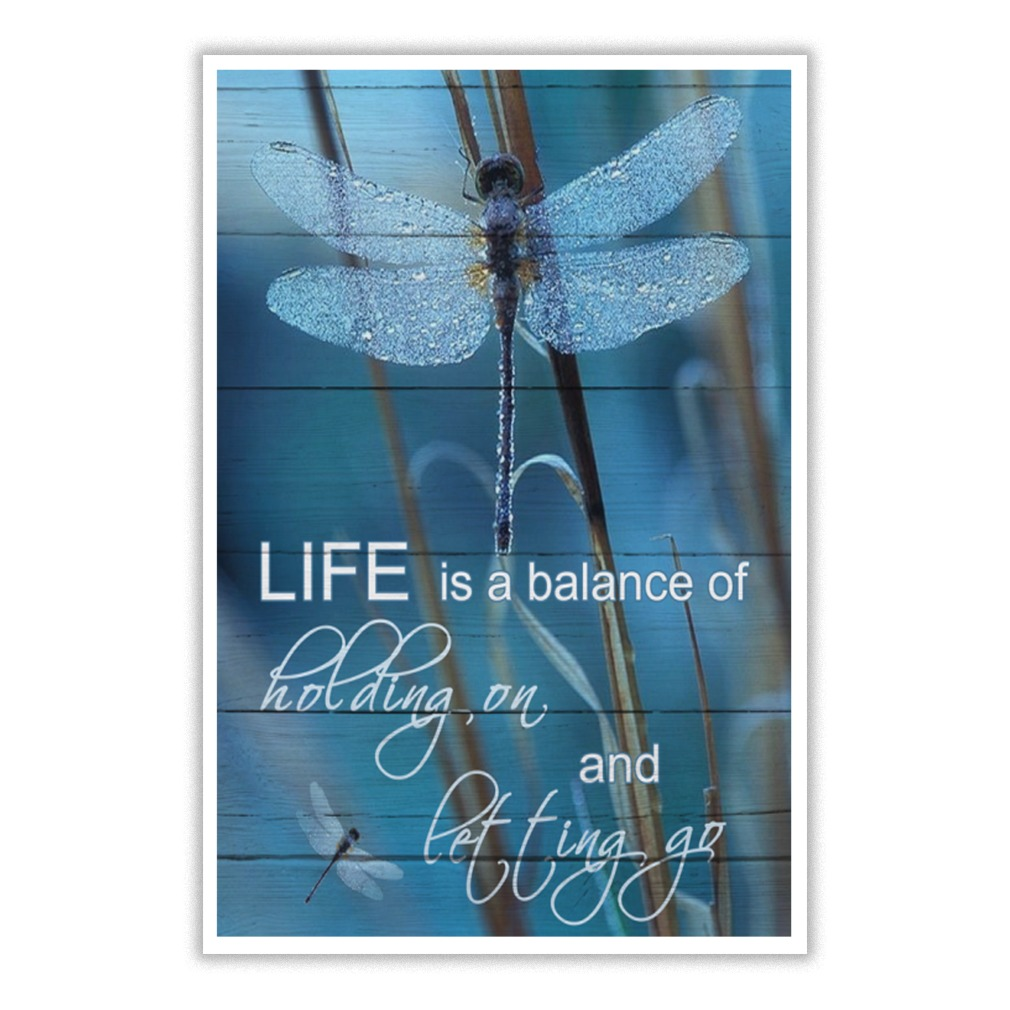 Dragonfly life is a balance of holding on and letting go poster